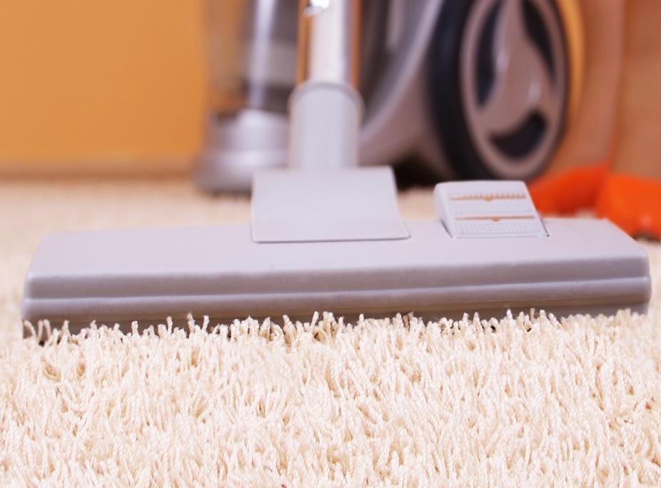 Punya Karpet Shaggy Jangan Lewatkan Tips Membersihkan Karpet Shaggy Berikut Ini